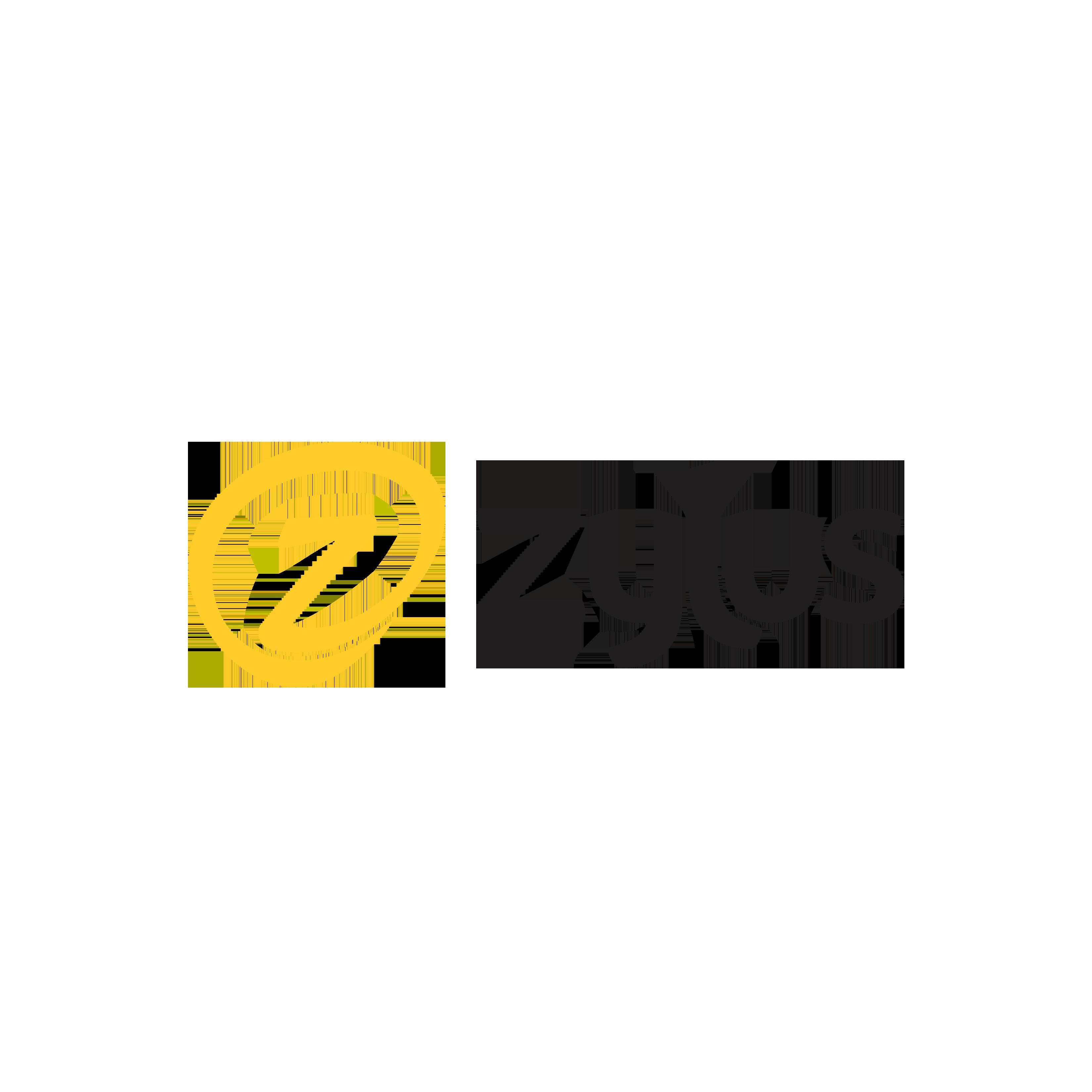 zylus group international